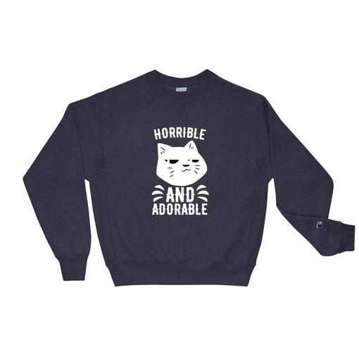 Adorable Navy Champion Sweatshirt